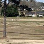 Boys Varsity Golf falls to Liberty