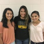 Lady Owls Earn TGCA/TABC All-State & Region Honors