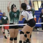 Volleyball Looking to Swing Into the Playoffs