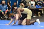 Wrestling Individual State Championships