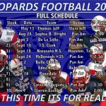 Leopards 2015