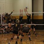 Lady Bears now 17-5, gearing for County this weekend