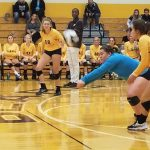 Lady Bears keep County Spike with win over Winchester