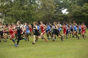Boys Cross Country DCC Championship