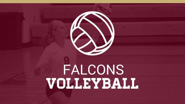 Skyline Volleyball Updates