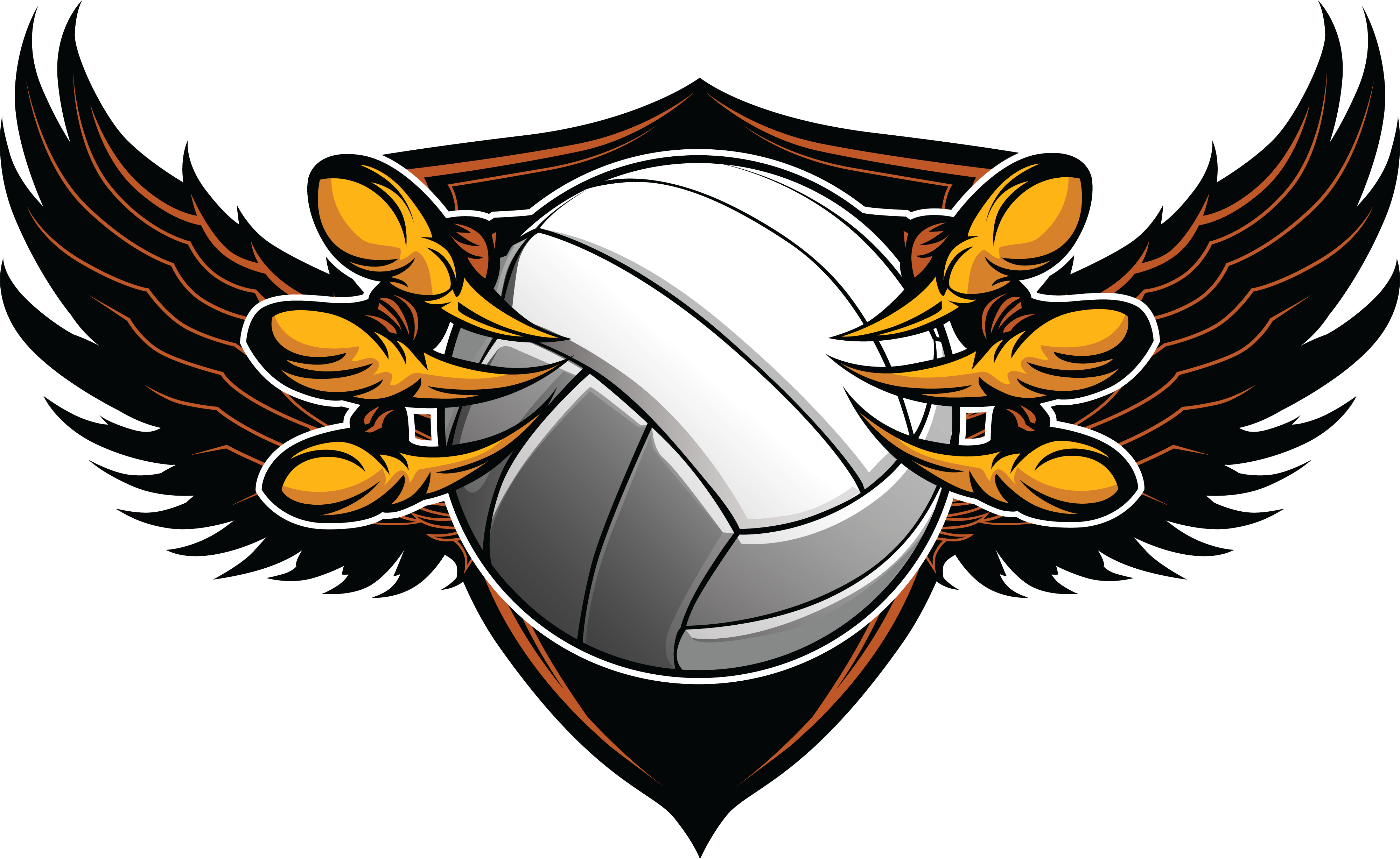 Interested in Playing Skyline Boys Volleyball Spring 2020?