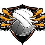 Skyline Girls Volleyball OPEN GYM Info