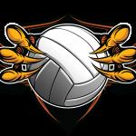 Skyline Girls Volleyball Summer 2020 Info