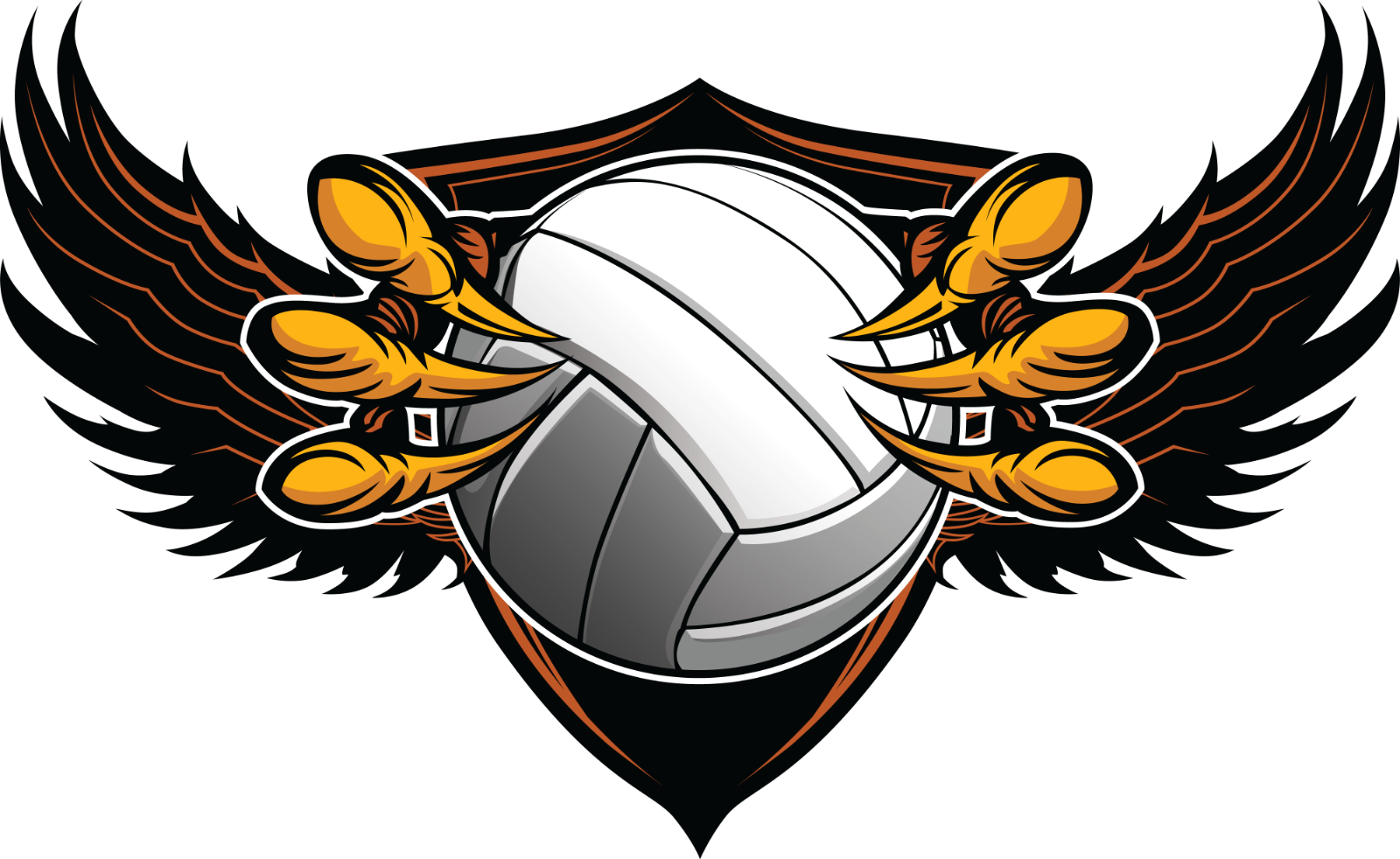 Skyline Girls Volleyball Summer 2020 Info