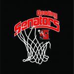 Gooding High School Boys Varsity Basketball falls to Sugar-Salem High School 59-61