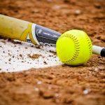 District Softball Info