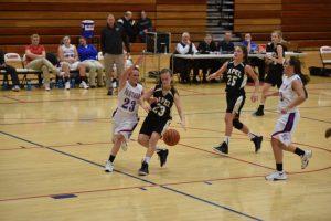 LHS Girls JV Basketball vs Elwood