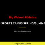 Big Walnut Athletics – Youth Sports Spring/Summer Camps – 2020