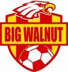 Varsity Girls Soccer Beat North 2-1