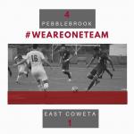 Varsity Men's Soccer Defeat East Coweta