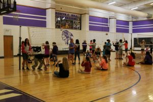Bonham Volleyball Clinic