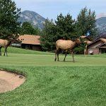 Golf at Estes Park Invite
