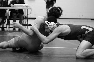 Wrestling Districts