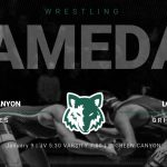 Wrestling @ Home vs Logan