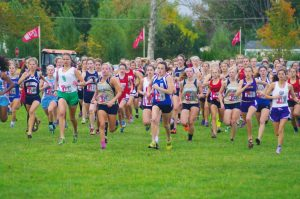 Norse Cross Country At Regional