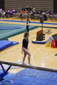 Wolves Gymnastics at DAC Championships 2-22-20