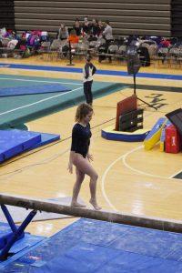 Wolves Gymnastics at DAC Championships 2-22-20