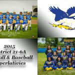 Baseball and Softball Postseason Awards