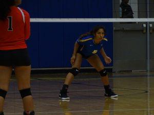 Varsity Volleyball vs South Houston 8-7-18