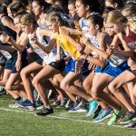 A large group of Cross country girls begin running at starting line