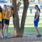 Multiple cross country girls are talking by a tree.