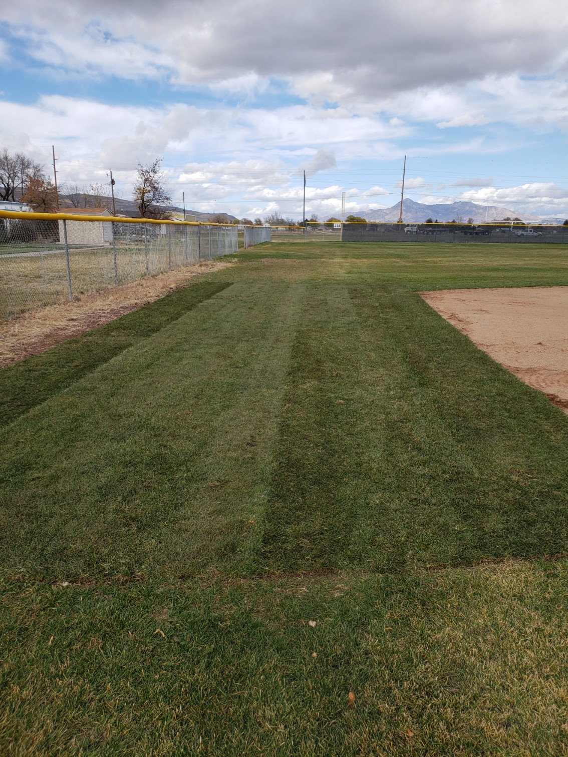 Baseball Field Improvements!