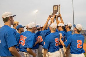 Baseball Sectional Photo Album