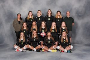 Girls Volleyball 2018