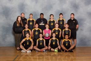 Boys Volleyball 2018