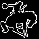 All Teams Schedule: Week of Jan 28 – Feb 03