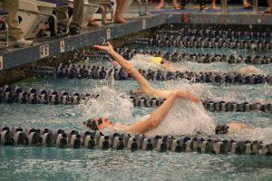 State Swim