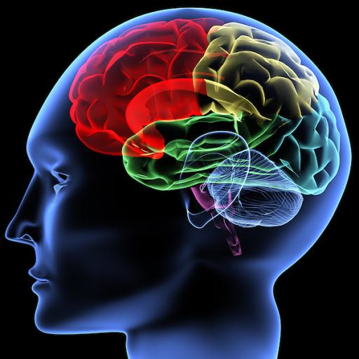 Concussion Testing Schedule