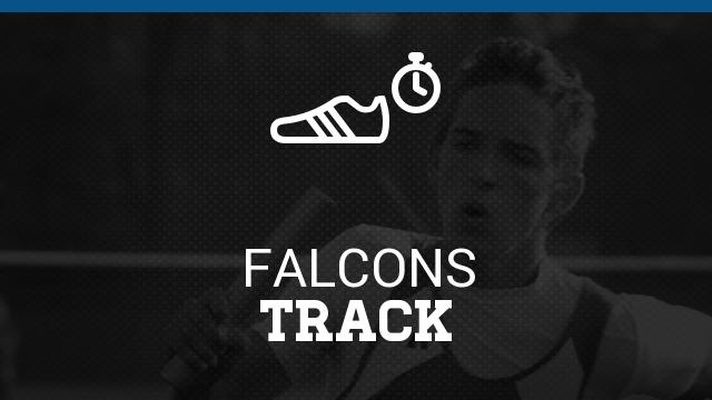 Falcons make All-Area Track Team