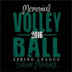 Spring Volleyball Camp for 5th and 6th Grade Girls