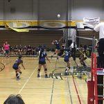 Volleyball sweeps Cerritos