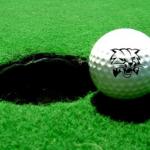 CHS Golf Team Beats Coshocton