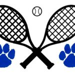 Lady Cats Fall at Dover