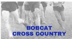 Cambridge Bobcat High School XC Results