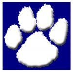 Girls Varsity Softball falls to St. Clairsville 11 – 0