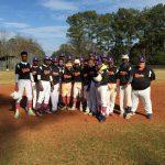 2015 Baseball Season