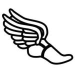South Haven Track Teams Win vs. Comstock