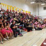 Volleyball Senior Night & Breast Cancer Awareness Night