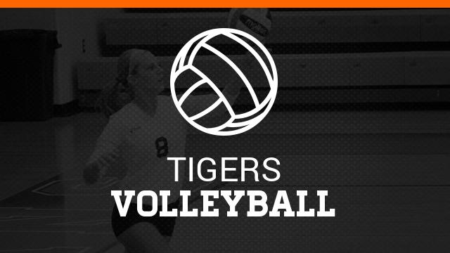 Volleyball plays well at Skyline Tournament
