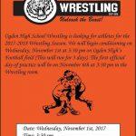 Wrestling Information