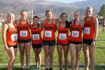 Tigers at State XC